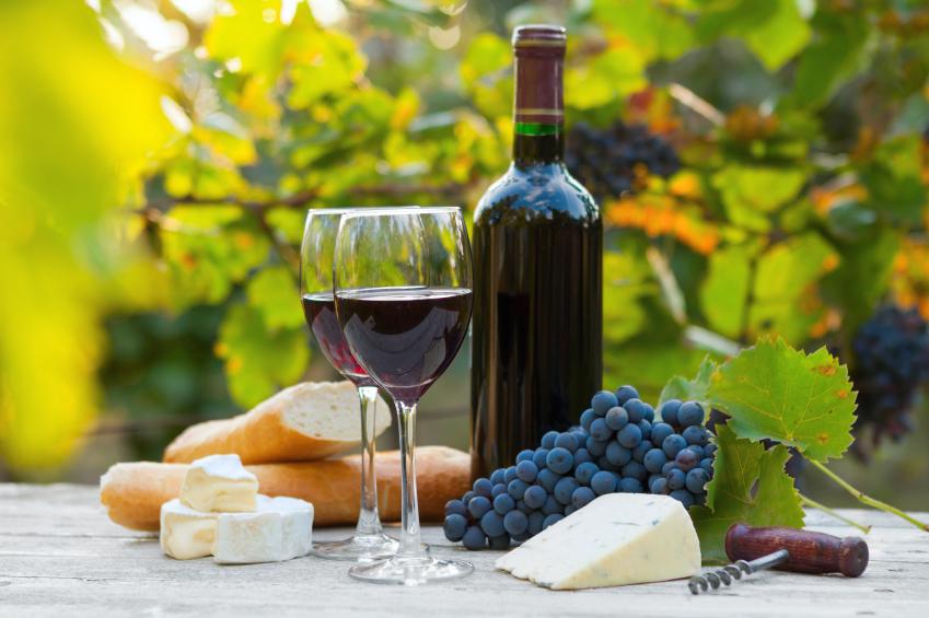 Rhone Wine Tours From Avignon